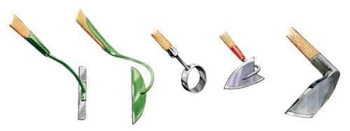 différents types de binettes