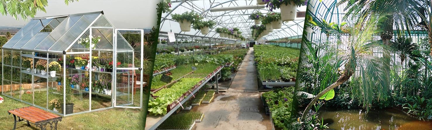 Serre de Jardin ⇒ Infos, comparatif & meilleur serres pour 2019