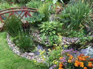 équipement bassin jardin