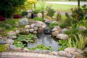 installer bassin jardin